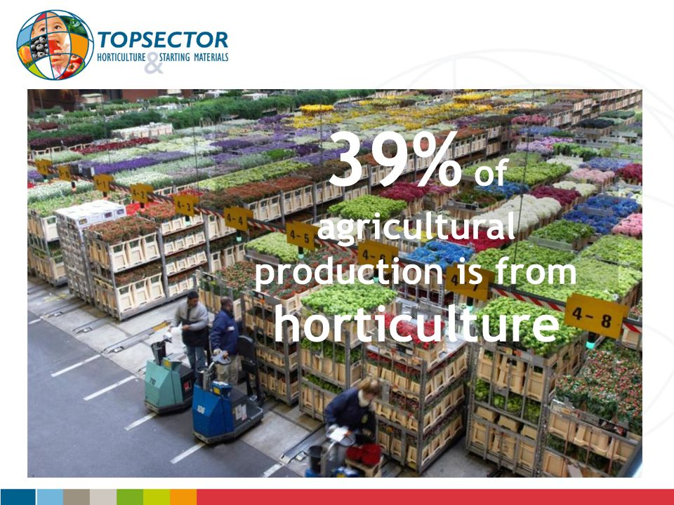 39% of agricultural production is from horticulture