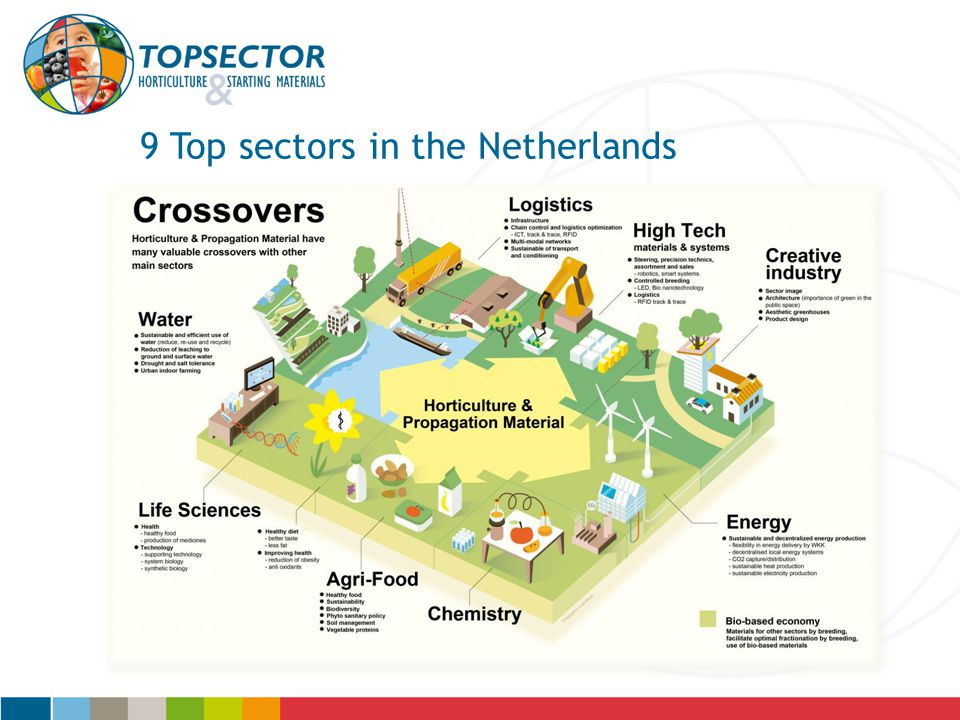 9 Top sectors in the Netherlands