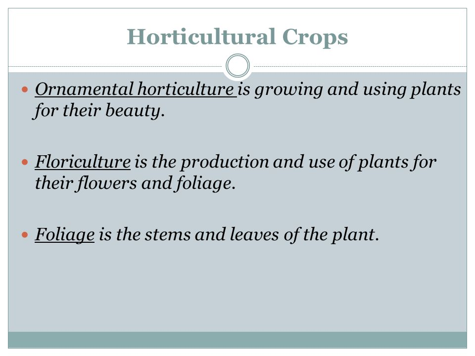 Horticultural Crops Ornamental horticulture is growing and using plants for their beauty.