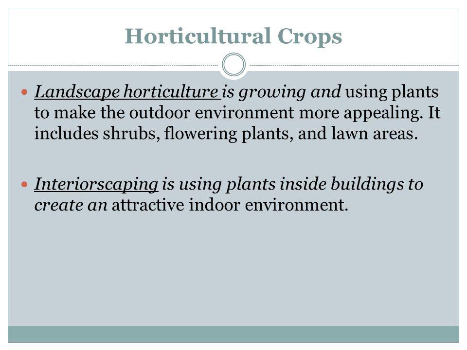 Horticultural Crops