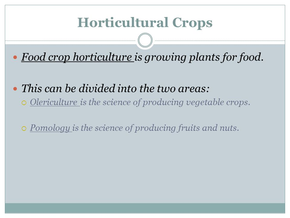 Horticultural Crops Food crop horticulture is growing plants for food.