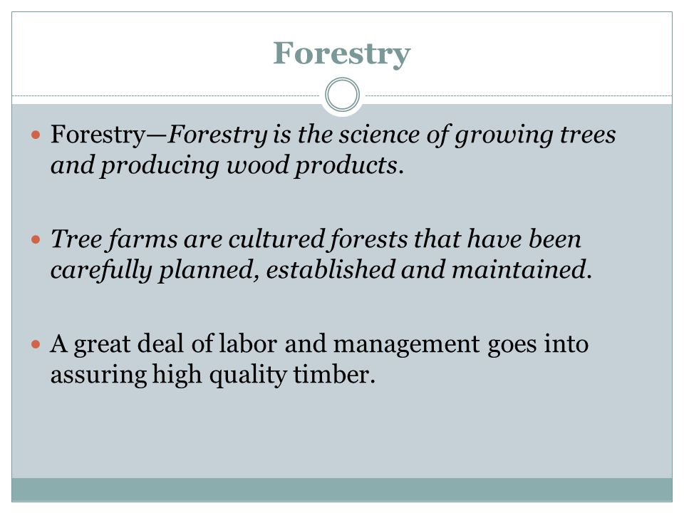 Forestry Forestry—Forestry is the science of growing trees and producing wood products.