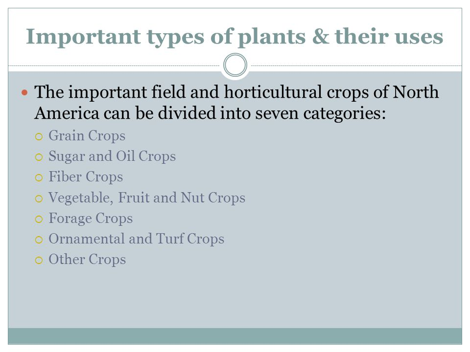 Important types of plants & their uses