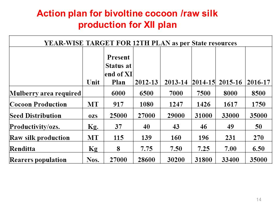 Action plan for bivoltine cocoon /raw silk production for XII plan