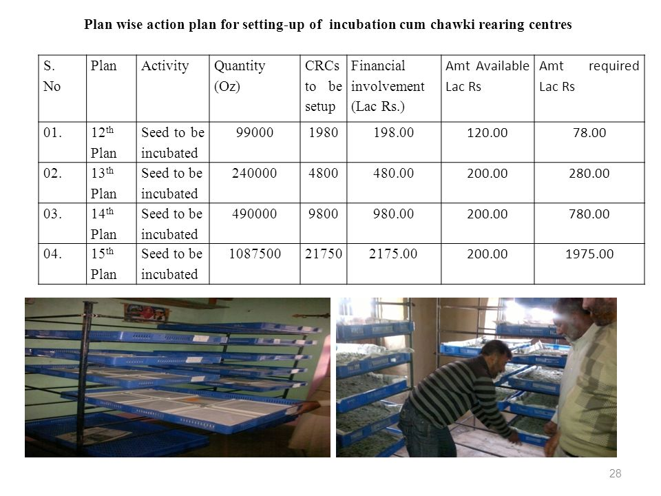 Plan wise action plan for setting-up of incubation cum chawki rearing centres
