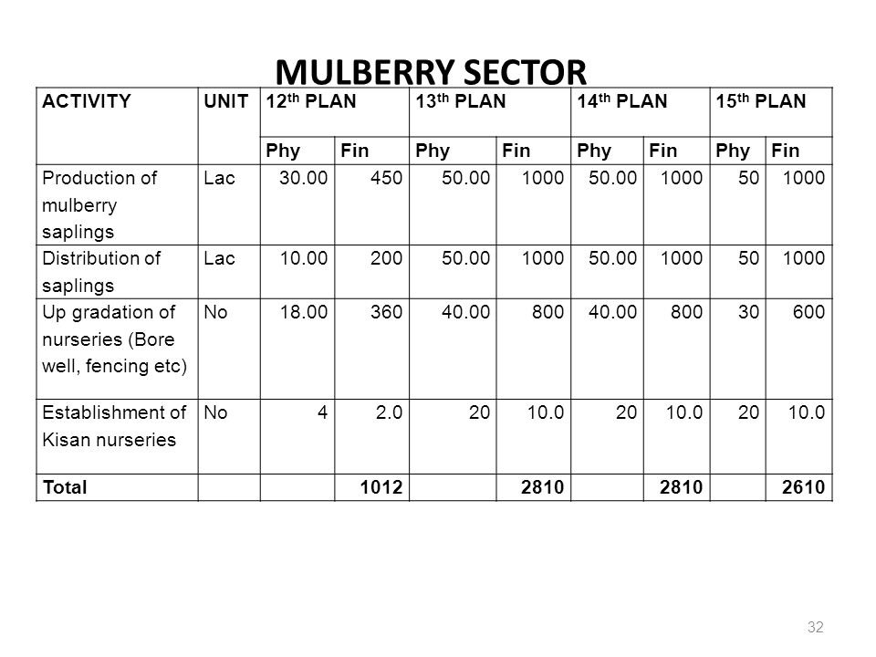 MULBERRY SECTOR ACTIVITY UNIT 12th PLAN 13th PLAN 14th PLAN 15th PLAN
