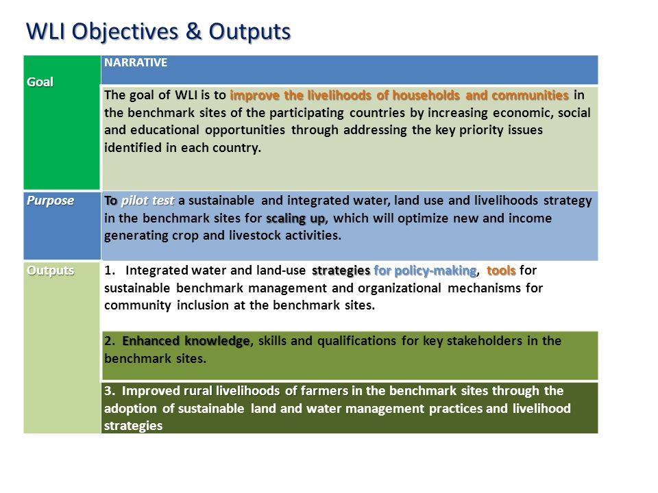 WLI Objectives & Outputs