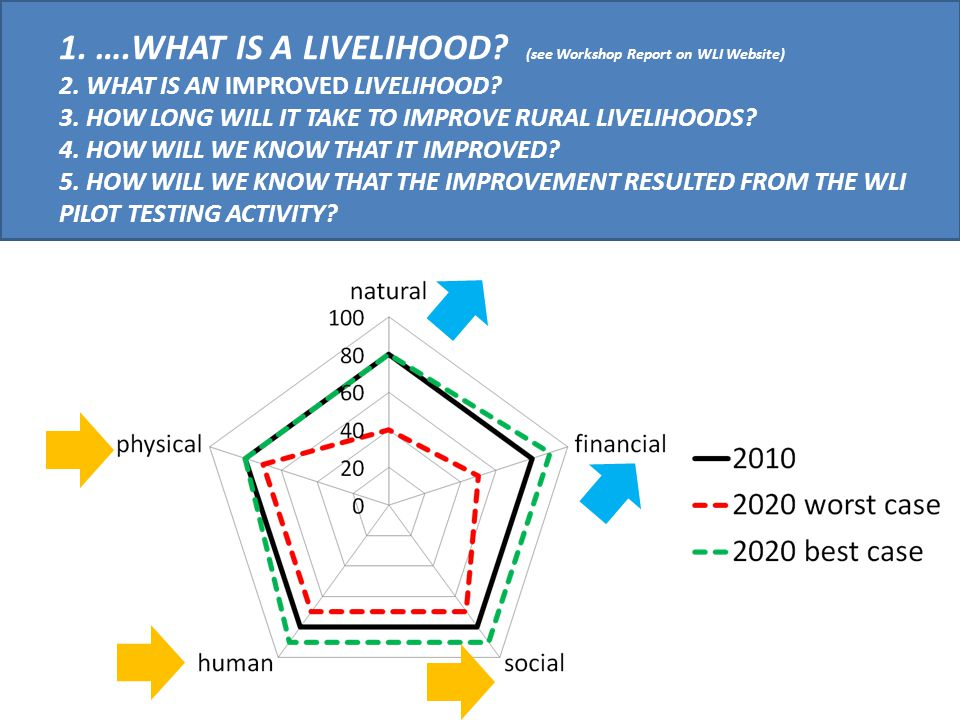1. …. WHAT IS A LIVELIHOOD. (see Workshop Report on WLI Website) 2