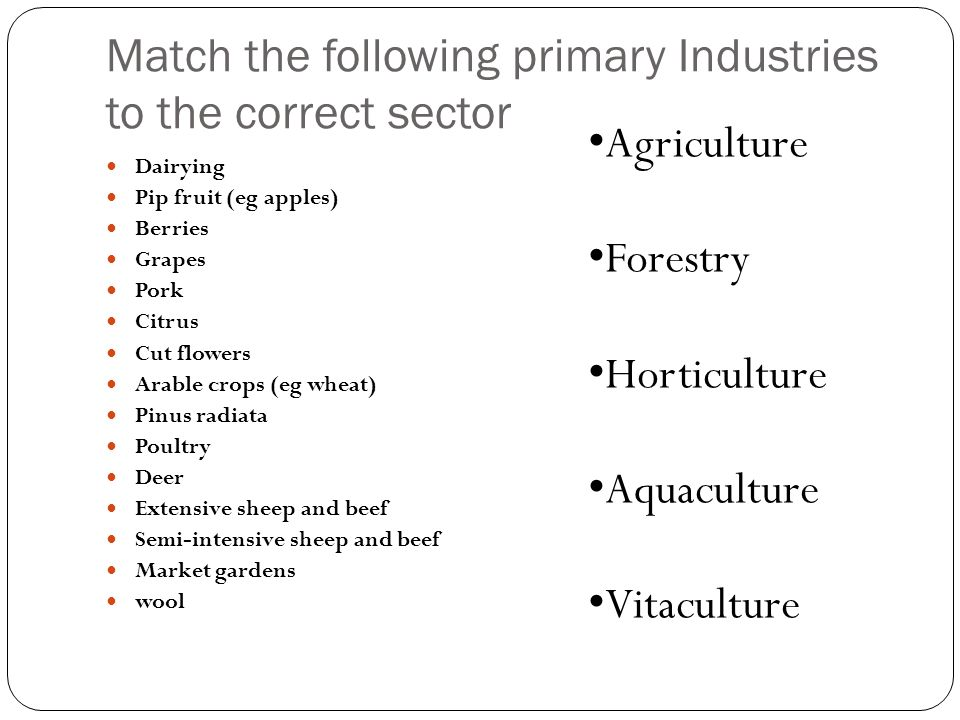 Match the following primary Industries to the correct sector