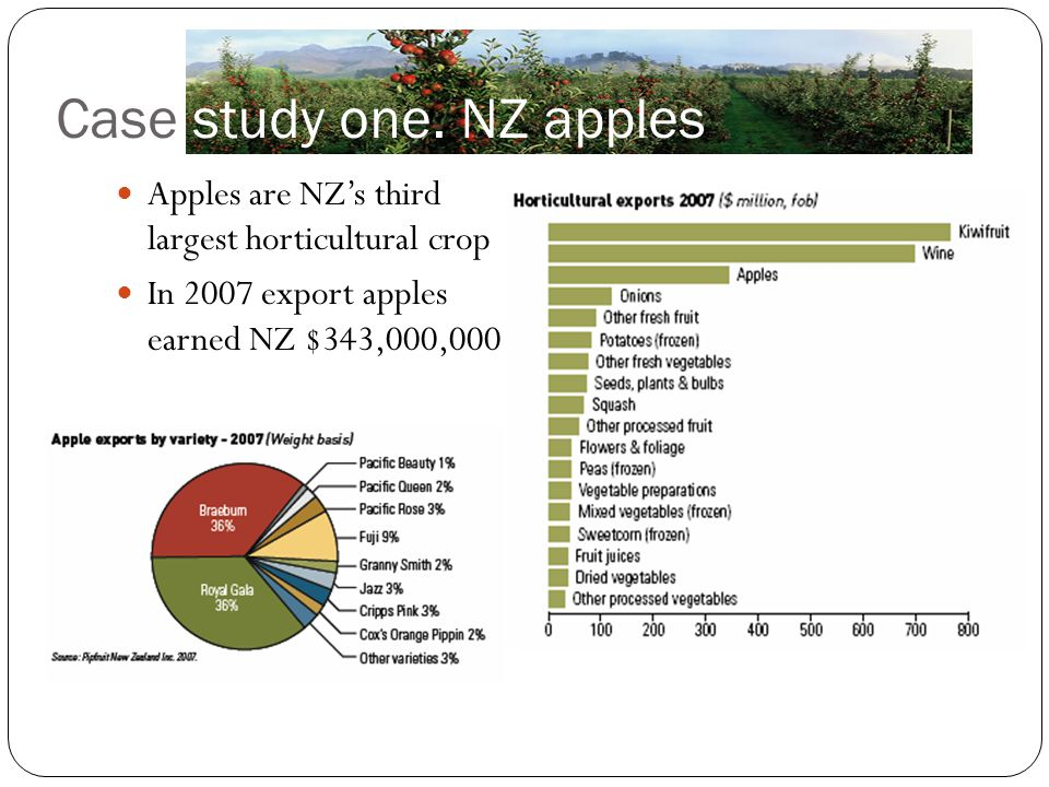 Case study one. NZ apples