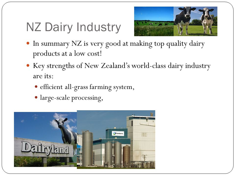 NZ Dairy Industry In summary NZ is very good at making top quality dairy products at a low cost!