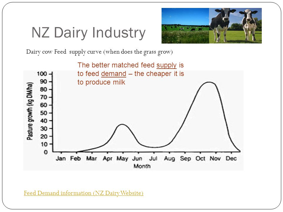 NZ Dairy Industry Dairy cow Feed supply curve (when does the grass grow)