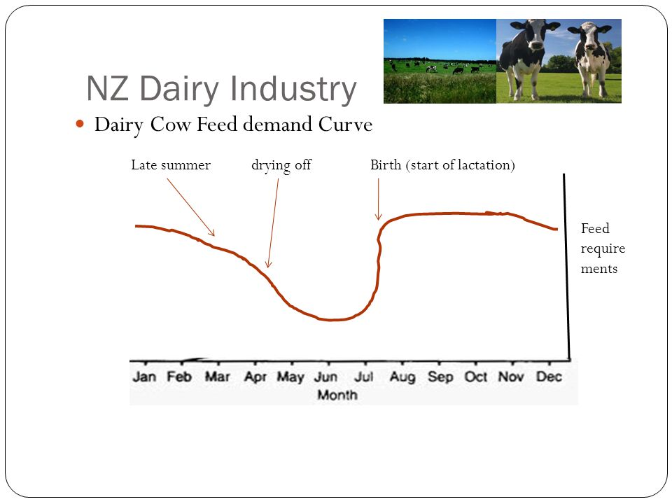 NZ Dairy Industry Dairy Cow Feed demand Curve