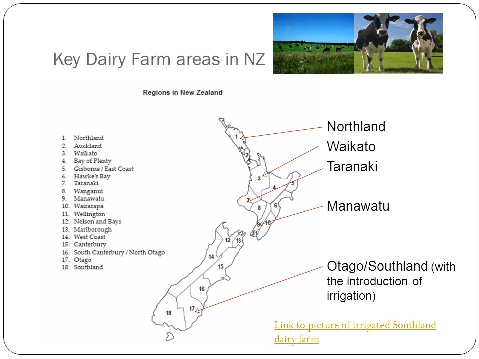 Key Dairy Farm areas in NZ