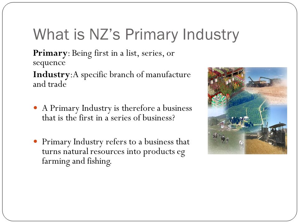 What is NZ's Primary Industry
