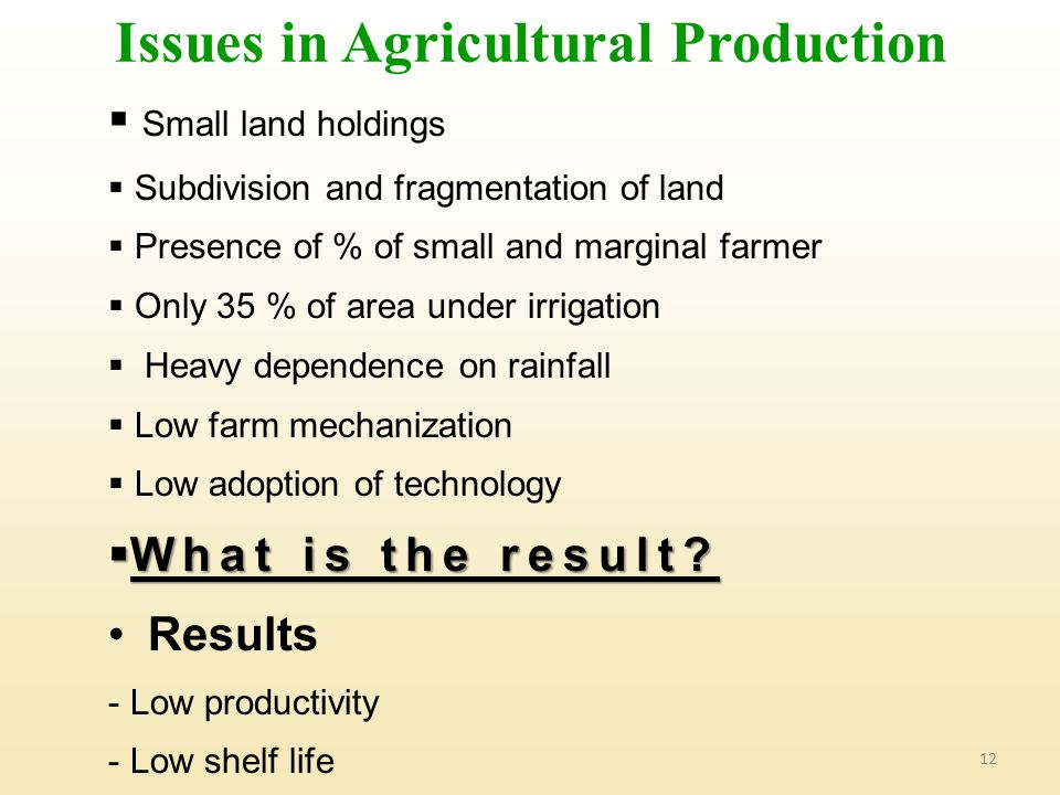 Issues in Agricultural Production