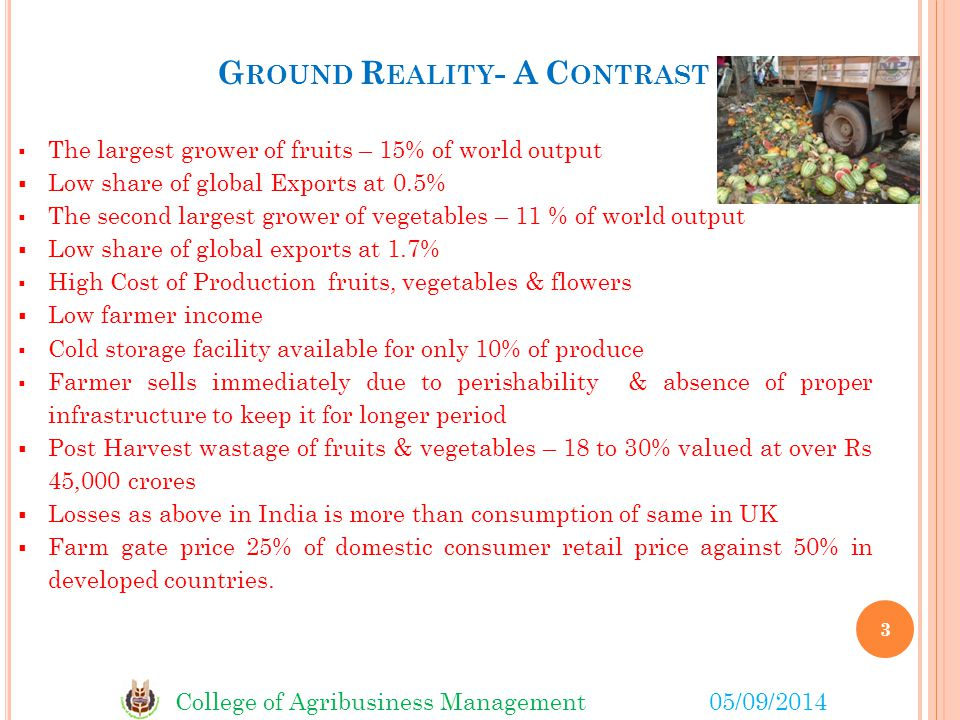 Ground Reality- A Contrast