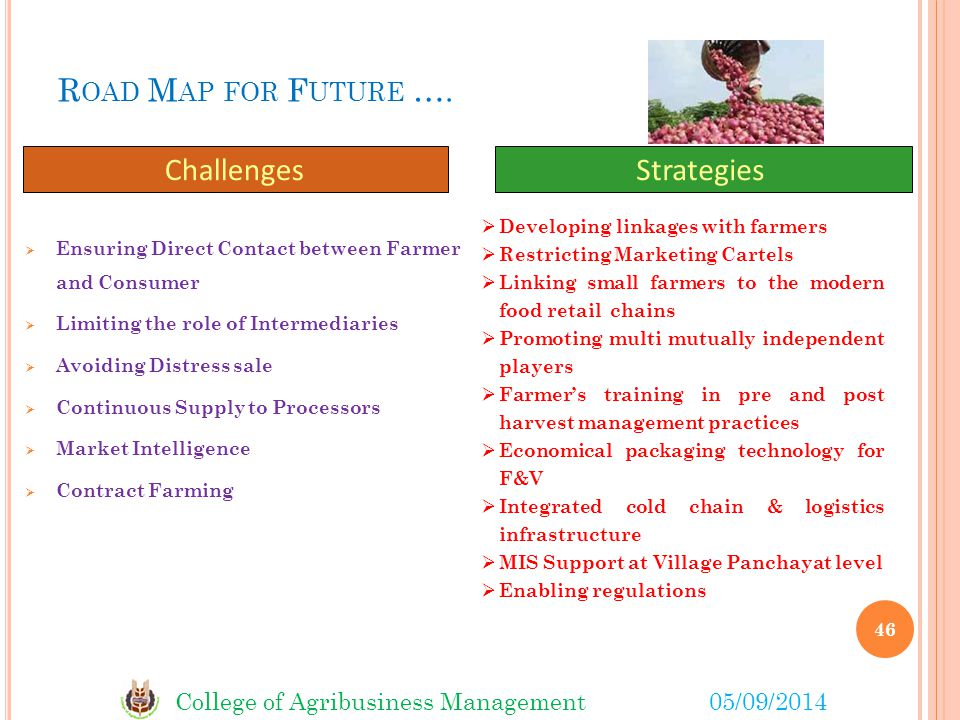 Road Map for Future …. Challenges Strategies