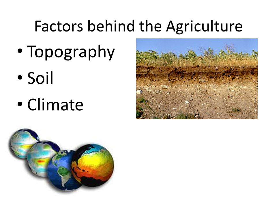 Factors behind the Agriculture