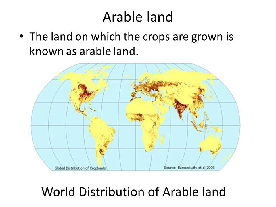 World Distribution of Arable land
