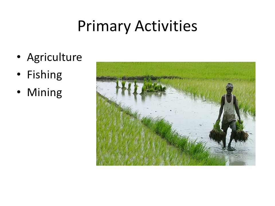 Primary Activities Agriculture Fishing Mining