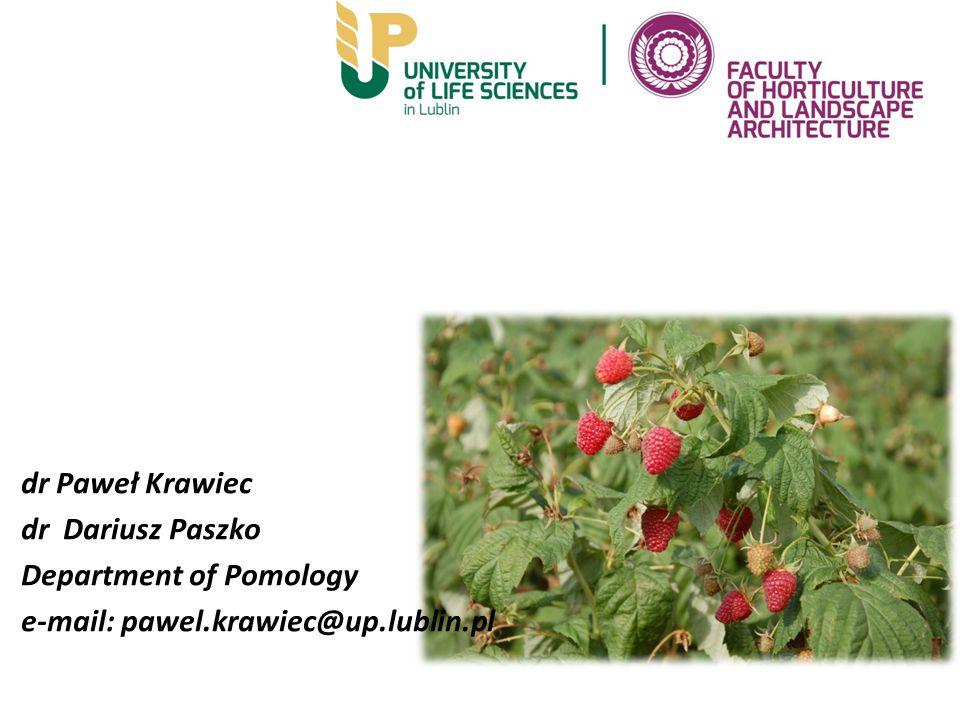 dr Paweł Krawiec dr Dariusz Paszko Department of Pomology e-mail: pawel.krawiec@up.lublin.pl