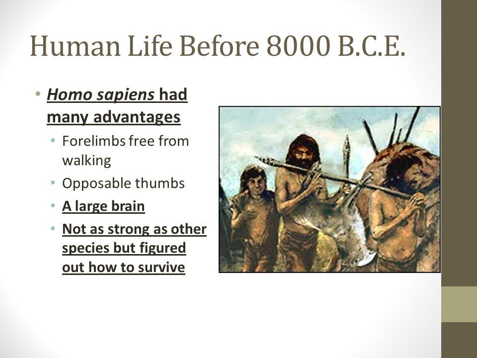 Human Life Before 8000 B.C.E. Homo sapiens had many advantages