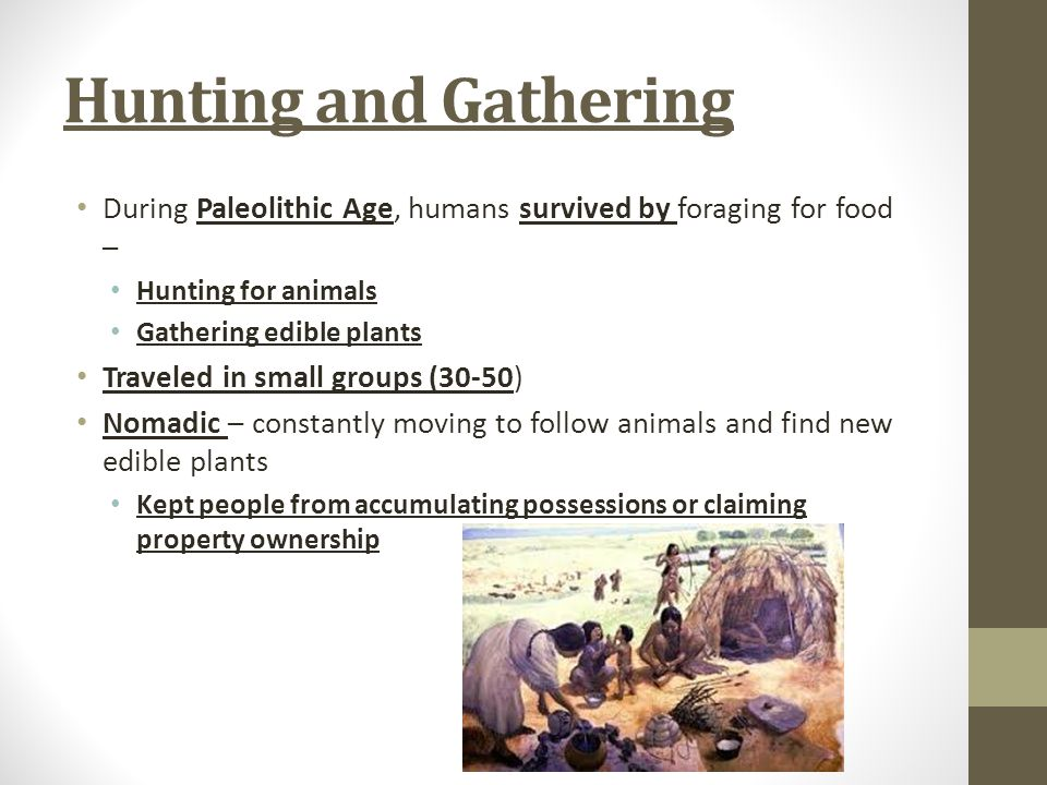 Hunting and Gathering During Paleolithic Age, humans survived by foraging for food – Hunting for animals.