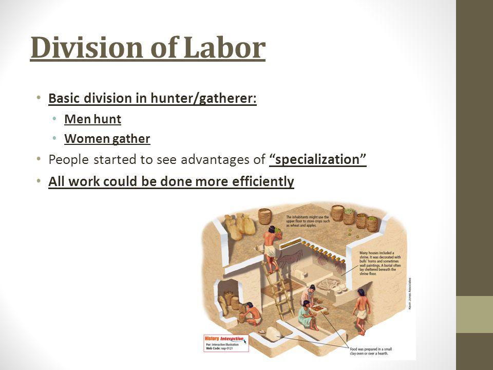 Division of Labor Basic division in hunter/gatherer:
