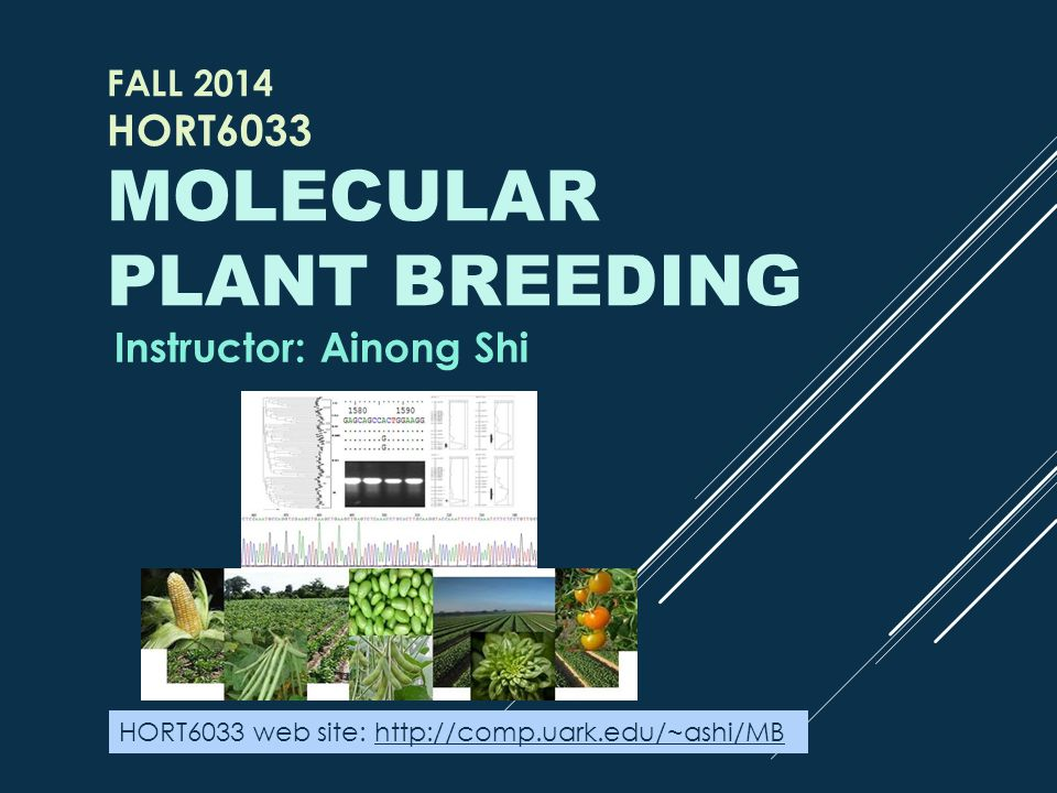 Fall 2014 HORT6033 Molecular plant breeding