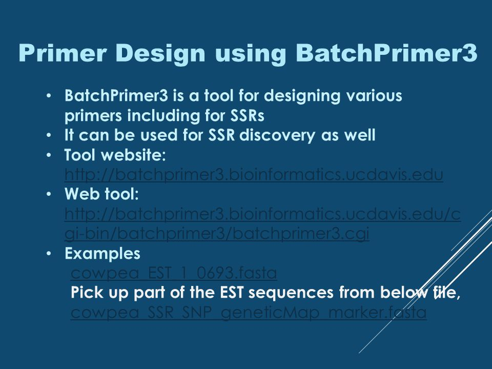 Primer Design using BatchPrimer3