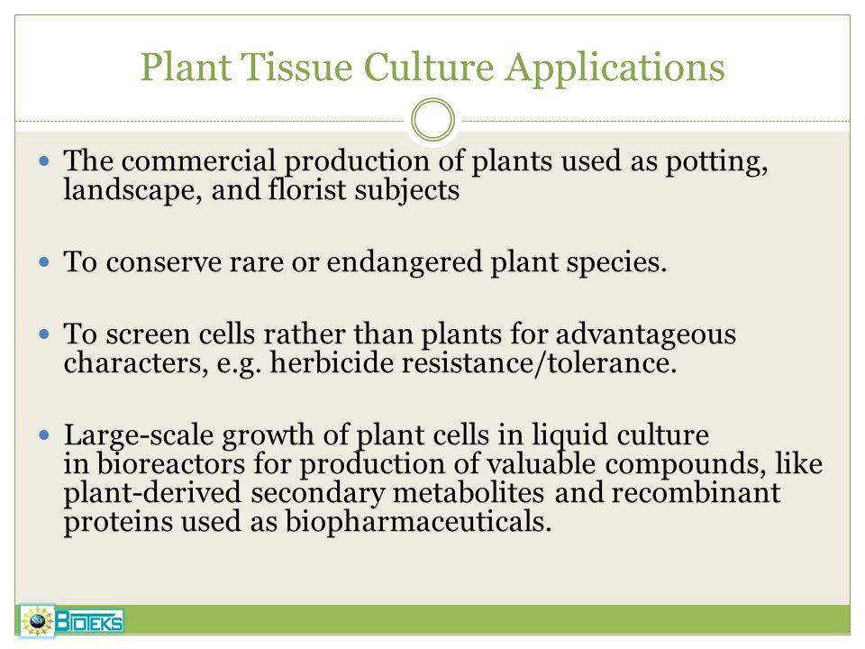 Plant Tissue Culture Applications
