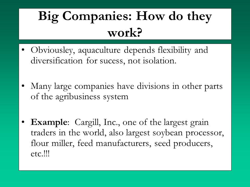 Big Companies: How do they work