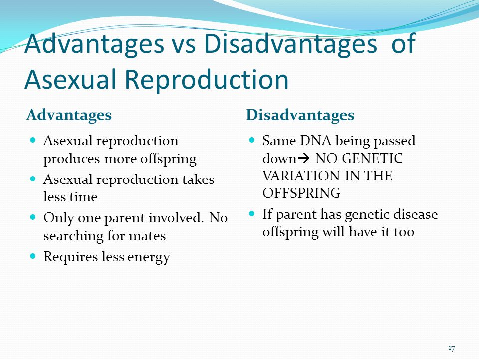 Advantages vs Disadvantages of Asexual Reproduction