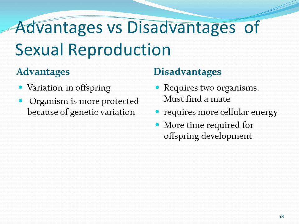 Advantages vs Disadvantages of Sexual Reproduction