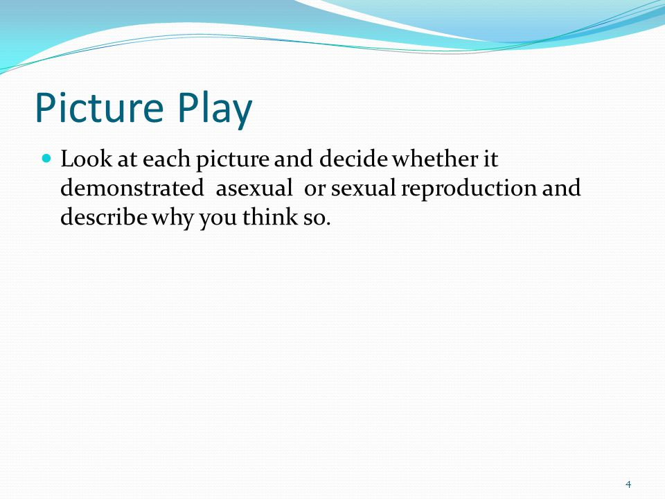 Picture Play Look at each picture and decide whether it demonstrated asexual or sexual reproduction and describe why you think so.