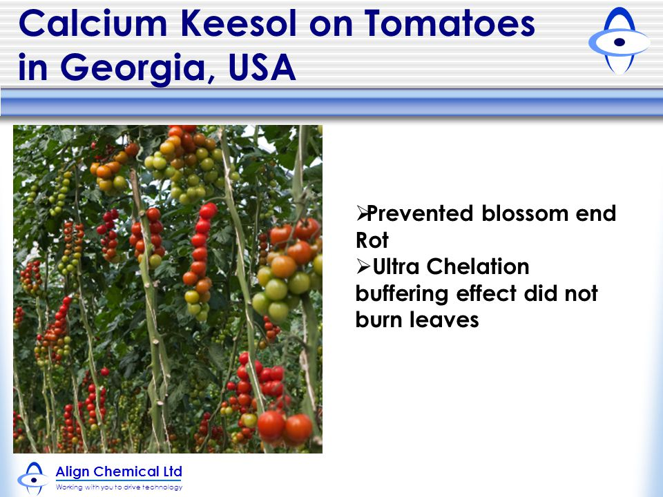 Calcium Keesol on Tomatoes in Georgia, USA