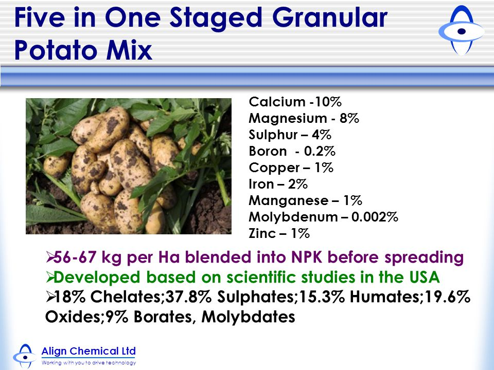 Five in One Staged Granular Potato Mix