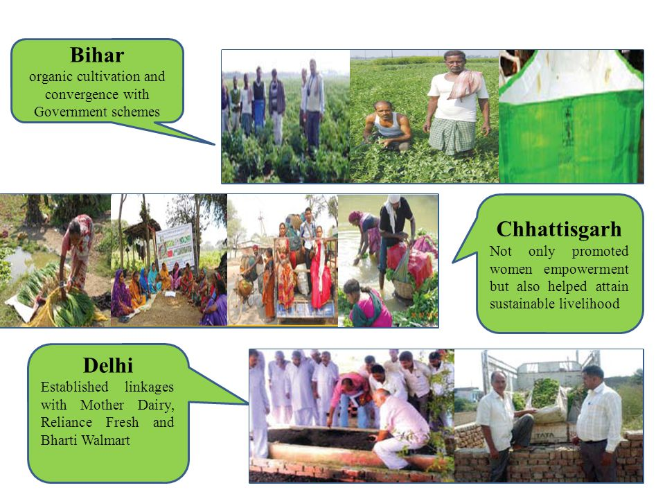 organic cultivation and convergence with Government schemes