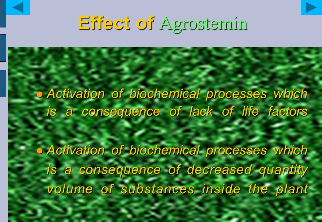 Effect of Agrostemin Activation of biochemical processes which