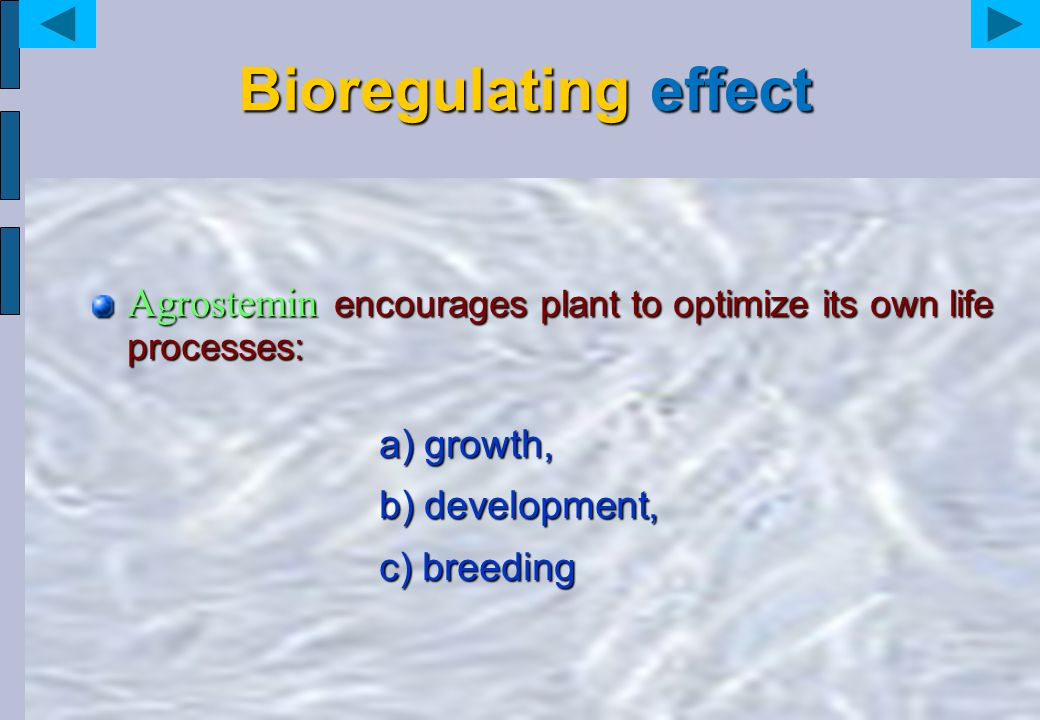 Bioregulating effect Agrostemin encourages plant to optimize its own life processes:
