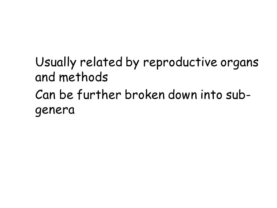 Genus Usually related by reproductive organs and methods Can be further broken down into sub-genera