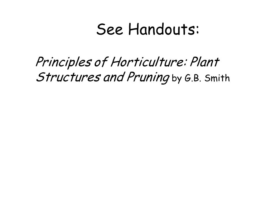 See Handouts: Principles of Horticulture: Plant Structures and Pruning by G.B. Smith