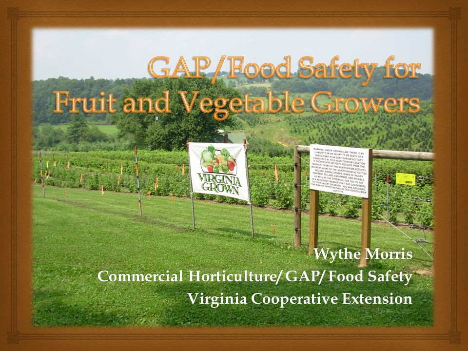 GAP/Food Safety for Fruit and Vegetable Growers
