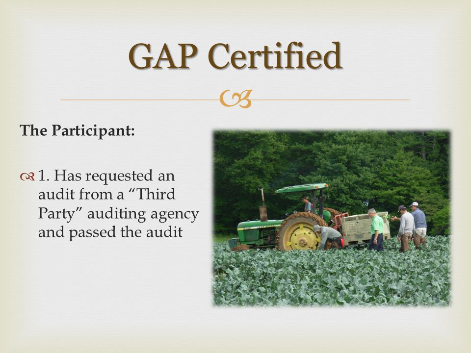 GAP Certified The Participant: