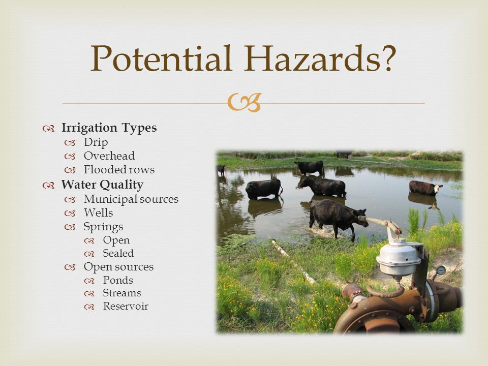 Potential Hazards Irrigation Types Water Quality Drip Overhead