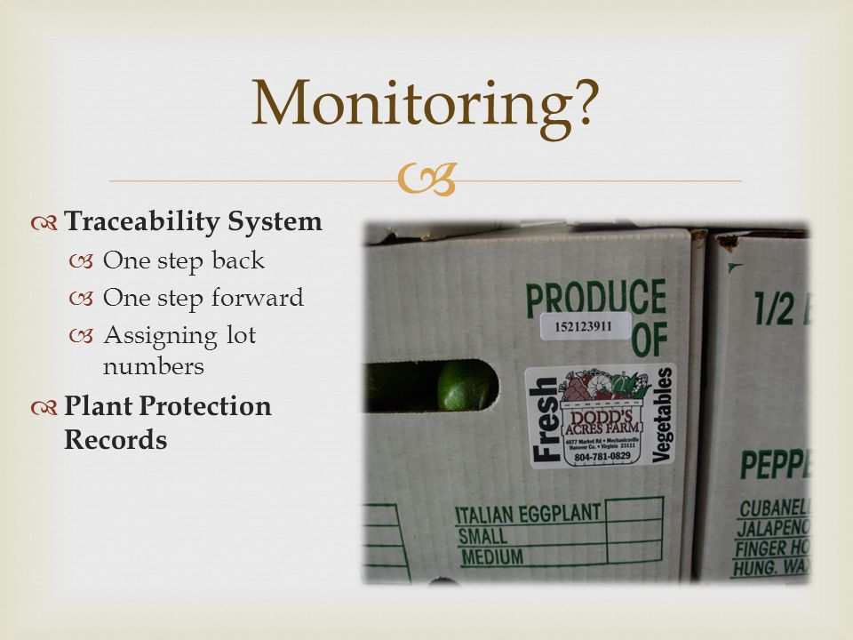 Monitoring Traceability System Plant Protection Records One step back