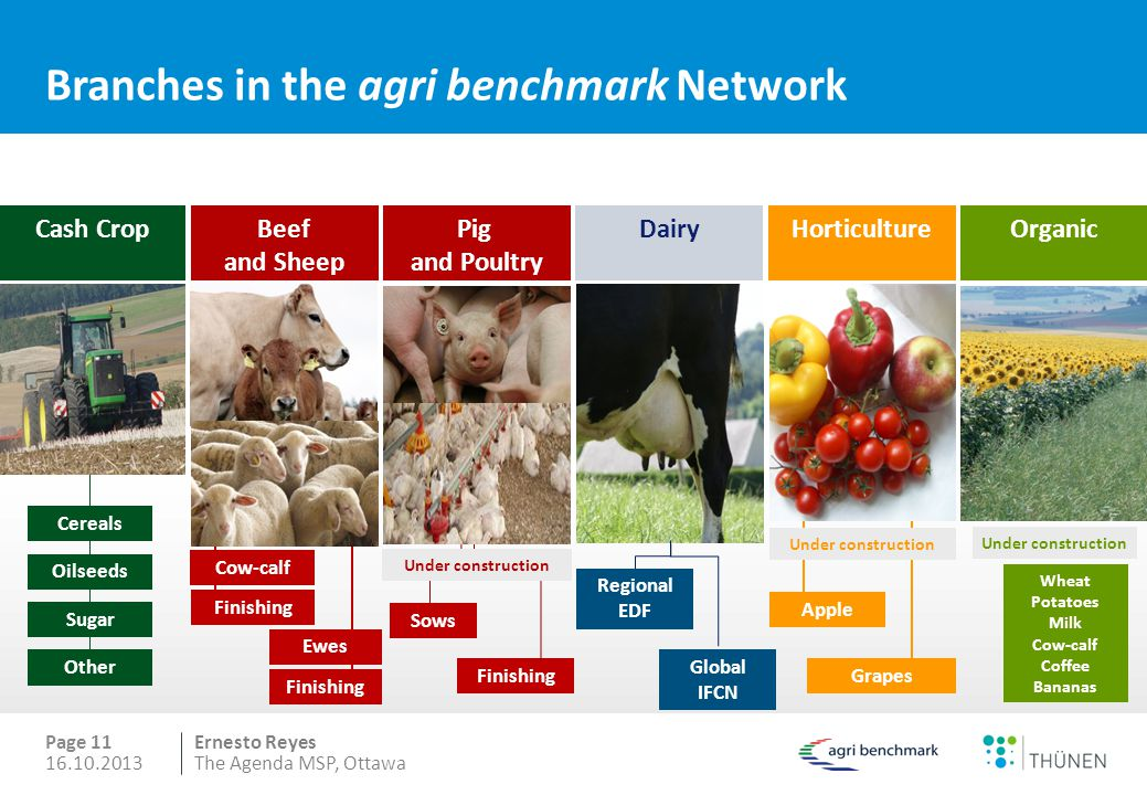 Branches in the agri benchmark Network