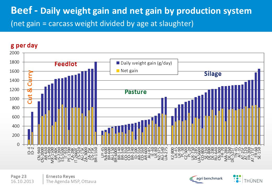 Beef - Daily weight gain and net gain by production system (net gain = carcass weight divided by age at slaughter)