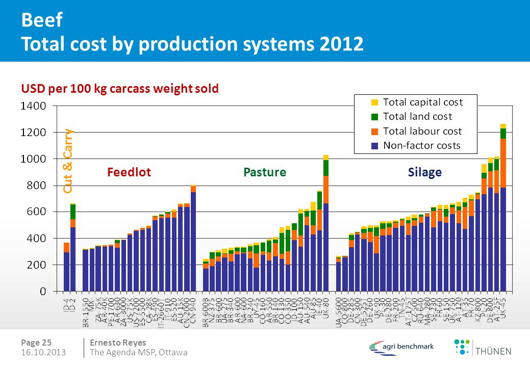 Beef Total cost by production systems 2012